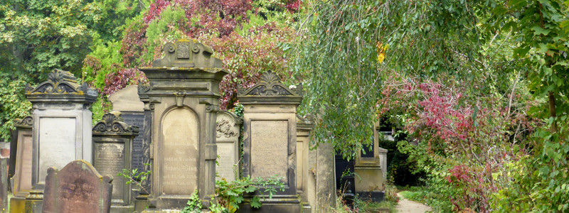 juedfriedhofworms-07