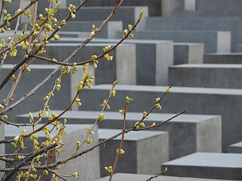 27 Januar Holocaust Gedenktag 2018 Speysight